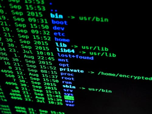 3 Reasons Why You Should Go Into Cybersecurity